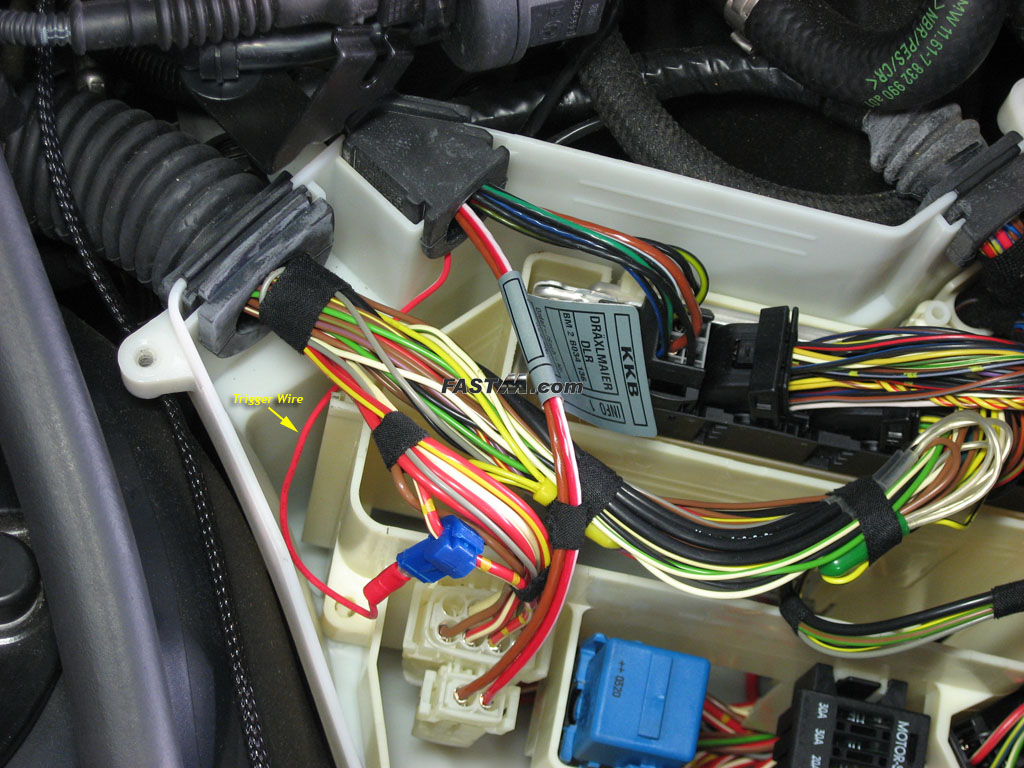 angeleyes33 bmw e46 angel eye install khoalty bmw blog Fog Light Wiring Diagram at mifinder.co